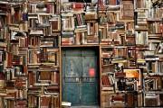 Florida librarians makes fake patron to keep books